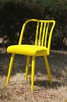 Стул (желтый)