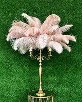 Перья страуса «пудрово-розовые» 55-65 см