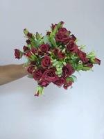 Роза «мелкая» - 2