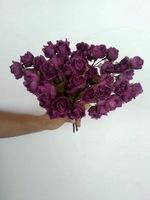 Мелкая роза - 4