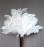 Перья страуса «белые» 50-55 см